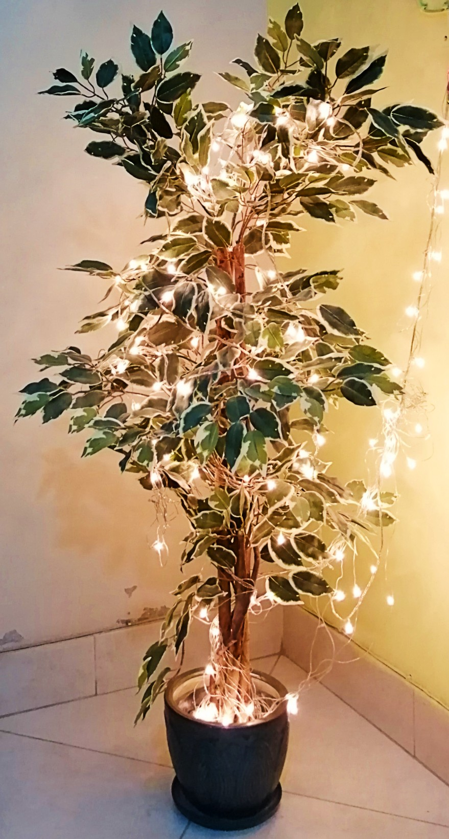 home styling- fairy lights